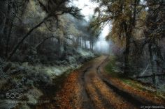 Caminos a ninguna parte (I) by xurxo. Please Like http://fb.me/go4photos and Follow @go4fotos Thank You. :-)