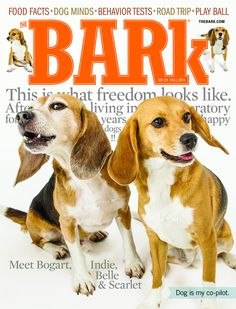 the Bark Issue 79: Fall 2014