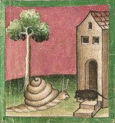 Demonagerie Ulrich von Pottenstein: Cyrillusfabeln - BSB Cgm (S. Medieval Life, Medieval Art, Medieval Manuscript, Illuminated Manuscript, Snail Art, Old Best Friends, Doodles, Getty Museum, Book Of Hours