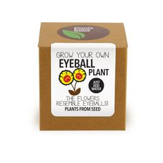 This kit contains everything you need to grow your own Eyeball Looking Flowers! Spilanthes acmella, also known as Acmella oleracea is a unique and versatile plant that will add texture and interest to your garden. The compact pompom shaped flower-heads resemble eyes (scary eyes) with a yellow ball and a red spot on top.