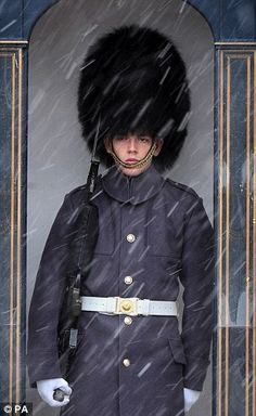 Freezing: A guardsman outside Buckingham Palace, London. From the Daily Mail.