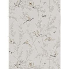 GP & J Baker Langdale Waters Edge Wallpaper at John Lewis