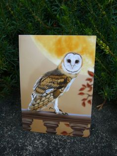 ACEO - Barn Owl Limited Edition - by Alison Spokes