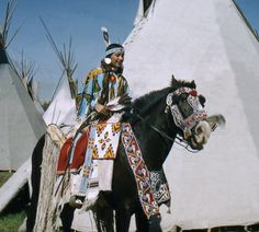 Horses & Bridles of the American Indians | #9