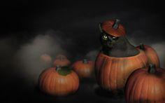 Happy Halloween Poems with cat images | Happy halloween pumpkin fog spooky black cat 1680x1050