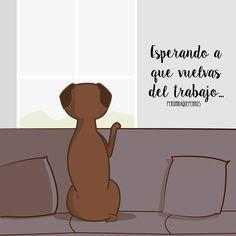 Un amor! Es es lo que es mi perro, un amor!!! Art By Peromiraqueperros #perros #perro #mascotas #veterinarios #peromiraqueperros