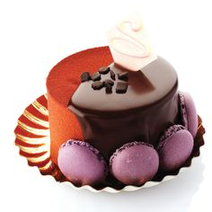 Sarah biscuit: Chocolat Mousse and red fruits.