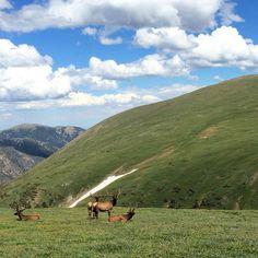 13 Rewards for the Outdoorsy | Rocky Mountain National Park, Colorado | FATHOM