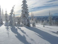 snow scene,  I have enjoyed this scenery  when snowshoeing and snowmobiling