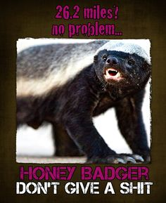 I am/will be the honey badger.