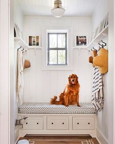 Heather Chadduck Hillegas (@heatherchadduck) • Instagram photos and videos Southern Living Magazine, Southern Living Homes, Home Renovation, Riverside House, Neutral Paint Colors, Circa Lighting, Low Country, Country Living, Coastal Living