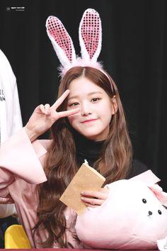 181118 Busan(부산) 7th fan sign event  #izone #wonyoung