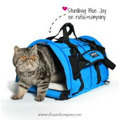 ¡Ya llegaron! Las bolsas de transporte para mascotas más fashion del universo :) ... Y en 14 colores diferentes y prints de edición limitada! #Sturdibag #Sturdi #Mascotas #Perro #Gato #rufusandcompany #BlogDeMascotas www.rufusandcompany.com