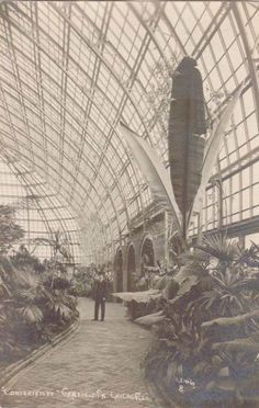 Garfield Park Conservatory-Chicago '10s