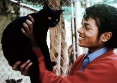 Oscars, Grammys, Pulitzers, Nobel Prizes... What do these prestigious awards have in common? Cats don't care about them. At all. And they don't care about the people who won them, either. This is a gallery of photographs of famous actors, directors, musicians, singers, writers, poets, and art...
