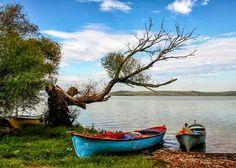 Çok güzel Seascape Paintings, Landscape Paintings, Rajasthani Painting, Lake Painting, Photo Mural, Fishing Photography, Boat Art, Watercolor Landscape, Beautiful Paintings