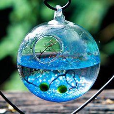 Want this -  NewDreamWorld Aquarium Kit 2 X 10mm Aquatic Living Moss Balls