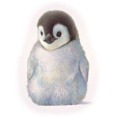 <b>Baby</b> <b>Penguins</b>