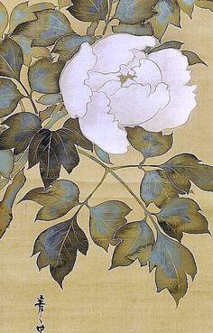 Detail. 鈴木其一 Suzuki Kiitsu. White Peonies. Japanese hanging scroll. Nineteenth century. Late Edo period. Rinpa School.
