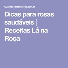 Dicas para rosas saudáveis   Receitas Lá na Roça Pizza Rapida, My Recipes, Carne, Dishes, Gardens, Decor, Cleanses, Power Pressure Cooker, Miraculous