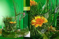 Green Inspiration #Steelgrass www.adomex.nl Green powers!