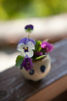"Good Pictures Pansies bouquet Strategies Pansies are definitely the multi-colored blooms with ""faces."" A cool-weather preferred, pansies are idea My Flower, Purple Flowers, Flower Power, Wild Flowers, Beautiful Flowers, Ikebana, Small Bouquet, Arte Floral, Bud Vases"