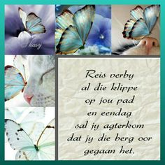 Reis verby al die klippe op jou pad Beautiful Collage, Beautiful Words, Evening Greetings, Goeie Nag, Afrikaans Quotes, Strong Quotes, Inspirational Message, Life Cycles, Good Morning Quotes