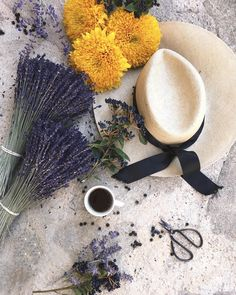 C'est l'été ☀️#whpjourney ☀️#provence #lavender #tournesol ✨ #coffeeandseasons #clangartcoffee #theprettycities #vzcomood #click_vision…