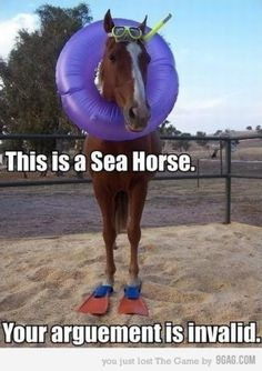 hahhaah this is some sea horse! :)