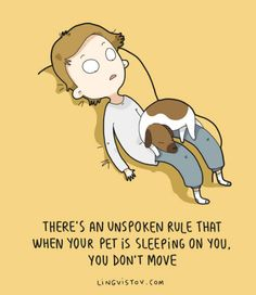 theres an unspoken rule