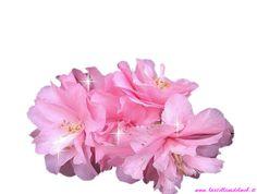 Buona settimana fiore rosa