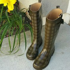 Capelli Rainboots Sz 6 Cute. Great condition. Clean inside. True to size. Capelli Shoes Winter & Rain Boots