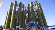 The report focuses on global major leading industry players with information such as company profiles, product picture and specifications, sales, market share and contact information. What's more, the Microalgae industry development trends and marketing channels are analyzed.