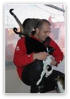 El Gato Andaluz     in het zuiden van Spanje.  Katten worden daar vaak gedumpt, mishandeld, verwaarloosd of gewond op straat achtergelaten.  De asielhouder Damian Garcia en zijn team met andere vrijwilligers doen er werkelijk alles aan om de katten zo goed mogelijk te helpen.   Zodra een dier opgeknapt is wordt er een goed thuis voor gezocht, zodat er weer een andere kat geholpen kan worden.   Ook kunnen moeilijk-plaatsbare katten op afstand geadopteerd worden.