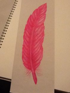 Biro drawing of a feather in pink ink.