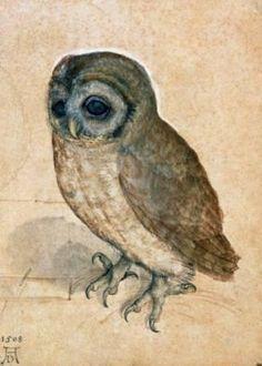 Dürer, Albrecht, Posters and Prints at Art.com