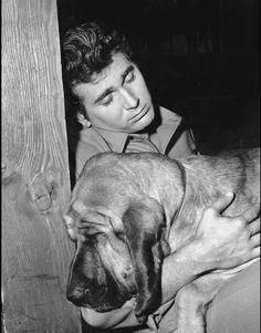 """""""Bonanza"""" Michael Landon in """"Hound Dog"""" Michael Landon, Hound Dog, Basset Hound, Saint Hubert Chien, Bonanza Tv Show, People Of Interest, Star Wars, Bloodhound, Old Tv"""