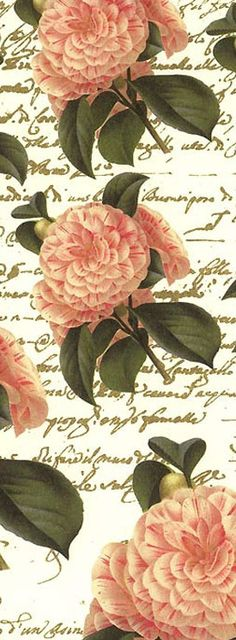 Christmas camellias paper from Italy with gold gilded highlights