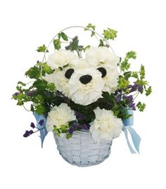 Puppy flowers in a basket - Doggone Cute by Cactus Flower, cactusflower.com $54.99