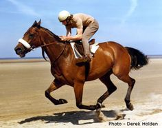 The most successful horse in the history of the Grand National is Red Rum, who won the steeplechase in 1973, 1974 and 1977. He also came second in 1975 and 1976