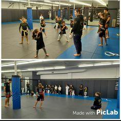 Our Little Ninjas ages 4-7 training hard! #kidsmma #kidsbjj #kidskarate #ultimatemma ultimatemmact.com