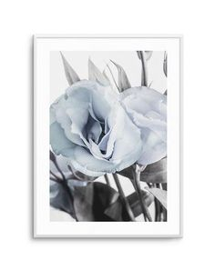My Wishlist - Olive et Oriel Wall Decor Online, Peony Print, Black And White Artwork, Plant Art, Selling Art, Abstract Watercolor, Botanical Art, Framed Wall Art, Poster Prints