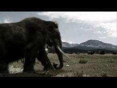 Prehistoric Predators of the Past - Episode 1: What Killed the Mega Beas...