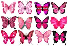 Wafer paper (rice paper) : teoria , tutorials e templates Butterfly Drawing, Butterfly Painting, Butterfly Wallpaper, Butterfly Cakes, Pink Butterfly, Wafer Paper, Paper Cupcake, Vintage Clipart, Butterfly Pictures