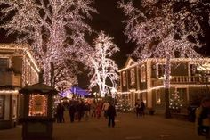 Liseberg Amusement Park in Gothenburg