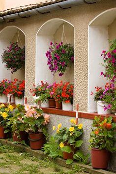 Plantas y flores en el jardín de la hacienda