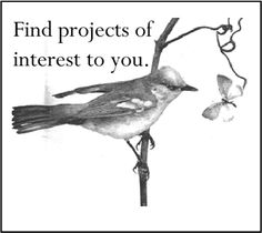 Find Citizen Science Projects through the Cornell Lab of Ornithology... then take part!