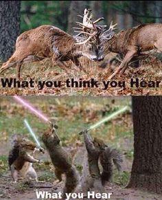 hahahahaha            yah