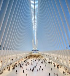 Hufton+Crow have shared with us their latest set of photographs: Santiago Calatrava's World Trade Center Transportation Hub in New York City. Architecture Magazines, Chinese Architecture, Futuristic Architecture, Amazing Architecture, Art And Architecture, Creative Architecture, Commercial Architecture, Futuristic Design, Contemporary Architecture