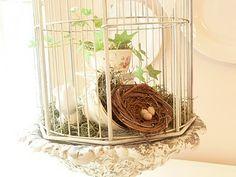 Birdcage Idea